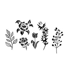 Flowers and plants set monochrome botanical vector
