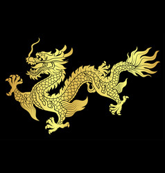 Gold chinese dragon crawling vector