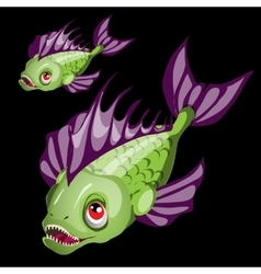 Predatory toothy green fish with purple fins vector