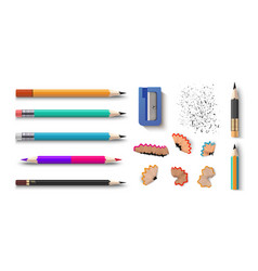 realistic pencils 3d colored school stationery vector image