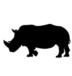 Rhino silhouette vector image