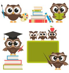 owls in the school vector image