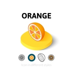 Orange icon in different style vector image vector image