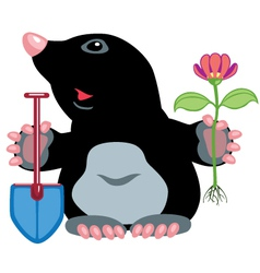 cartoon mole vector image