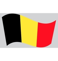 Flag of Belgium waving vector image
