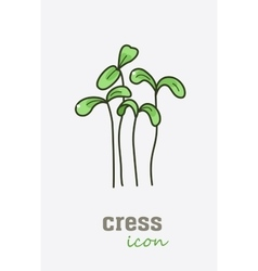 Garden cress icon Vegetable green leaves vector image
