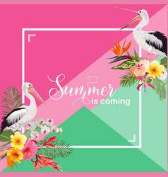 Hello summer design with tropical plants and birds vector