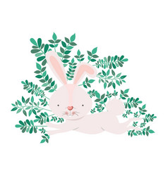 rabbit with branchs and leaves isolated icon vector image