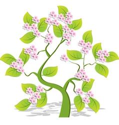single flowering tree vector image