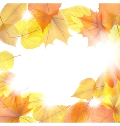 Autumn background with maple leaves plus EPS10 vector image vector image