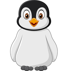 Cute baby penguin posing isolated vector image