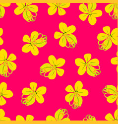 cassia fistula - golden shower flower on pink vector image