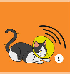 cat with satellite dish cone cartoon vector image