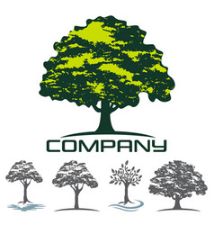 Deciduous tree logo vector