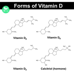 Forms vitamin d vector