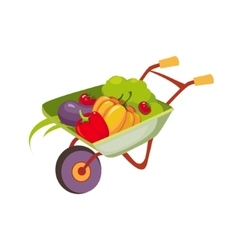 Fresh Vegetables Harvest In Wheel Barrel Farm And vector