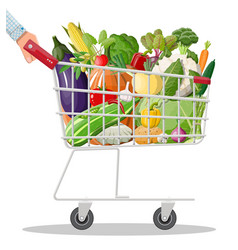 metal shopping cart full of vegetables in hand vector image