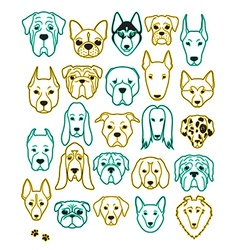 Set of 24 different breeds dogs neon handmade Head vector image