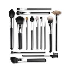 Set professional makeup powder blush brushes vector
