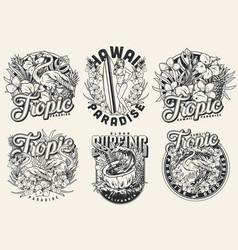 vintage surfing labels vector image