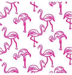 flamingo hot pink outline sketch seamless vector image