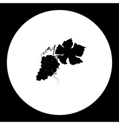 black grapes and leaf isolated icon eps10 vector image
