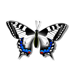 Butterfly machaon on white background with shadow vector