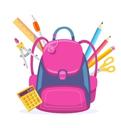 Colorful of big pink girly backpack with cal vector
