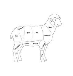 Lamb Meat Thin Line Farm Animal vector