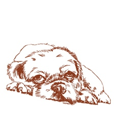 lonely dog hand sketch vector image