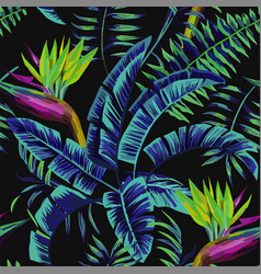 tropical exotic painting seamless background vector image