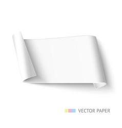 white paper roll long design for web banner vector image vector image