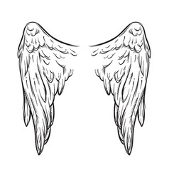 angel wings isolated on white tattoo design vector image vector image