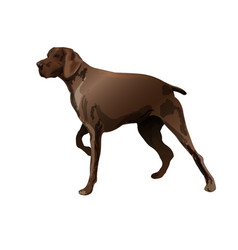 Big hunter dog vector