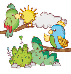cute animals parrots in branches tree sun cartoon vector image