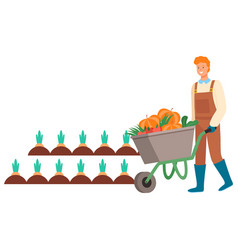 Man farming on field plantation carrots vector