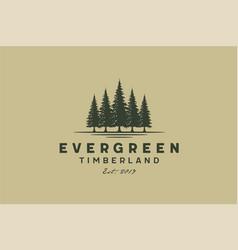 pines fir evergreen conifer spruce cedar tree logo vector image