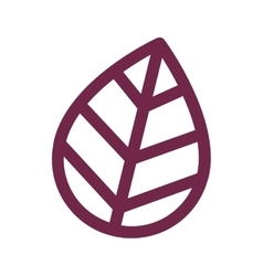 purple leaf icon vector image