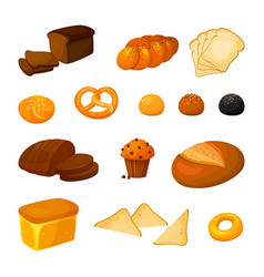 set of different kinds of bread cartoon vector image