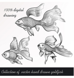 Set of filigree drawn goldfish in vintage style vector