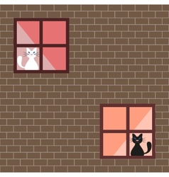 a cats in house windows vector image