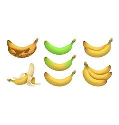 isolated realistic banana tropical bananas vector image