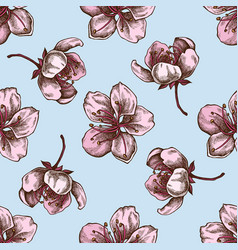 seamless pattern with hand drawn colored sakura vector image