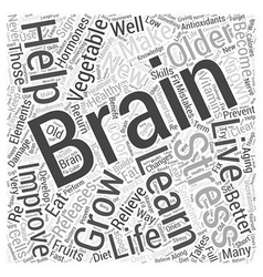 The brain and healthy aging word cloud concept vector