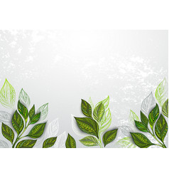 Background with tea plants vector