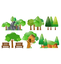 Different forest and park elements vector