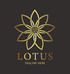 Lotus luxury flower logo template vector