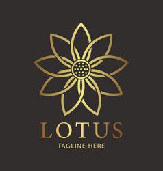 lotus luxury flower logo template vector image
