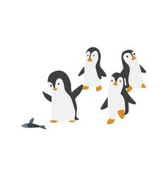 North pole arctic fauna polar penguin vector