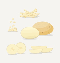 Potato Flat Icon vector image